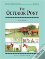 Outdoor Pony