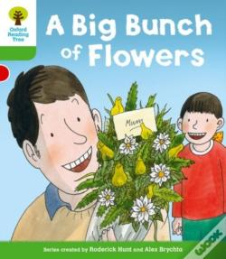 Wook.pt - Oxford Reading Tree: Level 2 More A Decode And Develop A Big Bunch Of Flowers