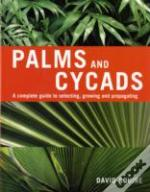 Palms And Cycads