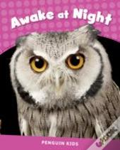 Penguin Kids 2 Awake At Night Reader Clil