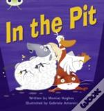 Phonics Bug In The Pit Phase 2
