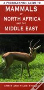 Photographic Guide To Mammals Of North Africa And The Middle East