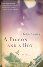 Pigeon And A Boy