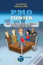 Pmo Fighter - How To Win In The Ring Of Projects In Large Corporations