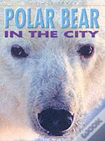 Polar Bear In The City