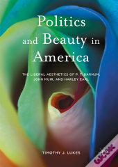 Politics And Beauty In America