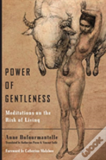 Power Of Gentleness