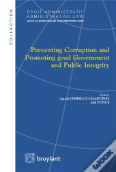 Preventing Corruption And Promoting Good Government And Public Integrity