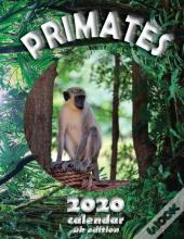 Primates 2020 Calendar (Uk Edition)