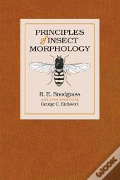 Principles Of Insect Morphology