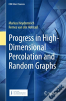 Progress In High-Dimensional Percolation And Random Graphs