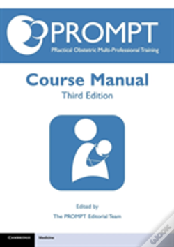 Wook.pt - Prompt Course Manual