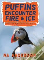 Puffins Encounter Fire And Ice: Iceland:
