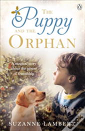 Puppy And The Orphan The