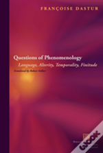 Questioning Phenomenology