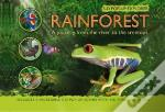 Rainforest 3-D Pop-Up Explorer
