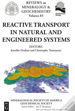 Wook.pt - Reactive Transport In Natural And Engineered Systems