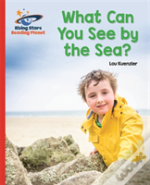 Reading Planet - What Can You See By The Sea? - Red B: Galaxy