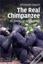 Real Chimpanzee Behavior