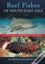 Reef Fishes Of South East Asia