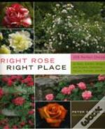 Right Rose Right Place