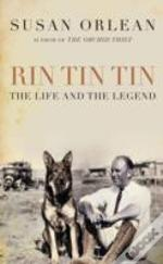 Rin Tin Tin Air Exp