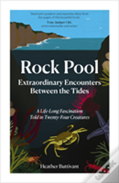 Rock Pool: Extraordinary Encounters Between The Tides