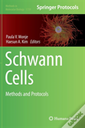 Schwann Cells
