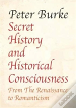 Secret History And Historical Consciousness From Renaissance To Romanticism