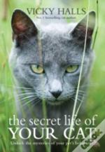 Secret Life Of Your Cat