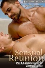Sensual Reunion - A Sexy M/M Gay Erotic Romance Short Story From Steam Books
