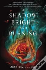 Shadow Bright And Burning (Kingdom On Fire, Book One)