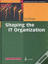 Shaping The It Organization