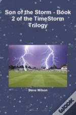 Son Of The Storm - The Timestorm Trilogy Book 2