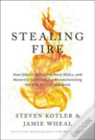 Stealing Fire The Secrets Hb