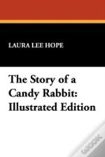 Story Of A Candy Rabbit
