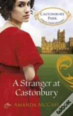 Stranger At Castonbury