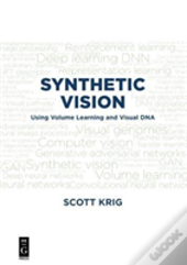 Synthetic Vision