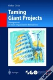 Taming Giant Projects