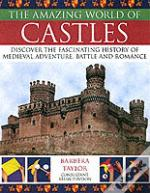 The Amazing World Of Castles