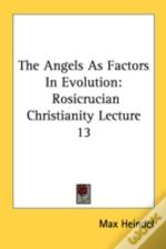 The Angels As Factors In Evolution: Rosicrucian Christianity Lecture 13