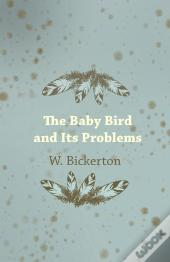 The Baby Bird And Its Problems