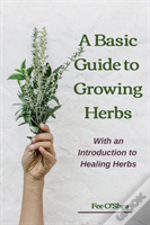 The Basic Guide To Growing Herbs