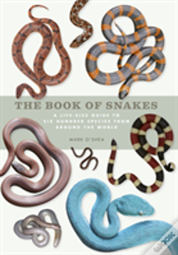 Wook.pt - The Book Of Snakes