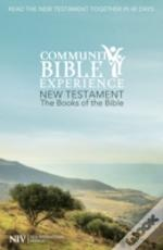 The Books Of The Bible: New Testament