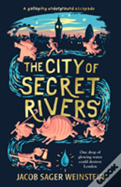 The City Of Secret Rivers