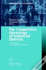 The Competitive Advantage Of Industrial Districts: Theoretical And Empirical Analysis