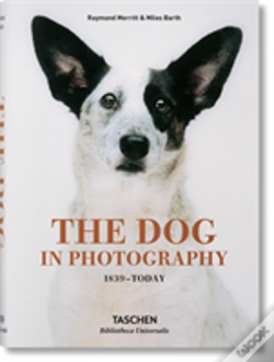 Wook.pt - The Dog In Photography 1839-Today