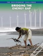 The Environment Challenge: Bridging The Energy Gap