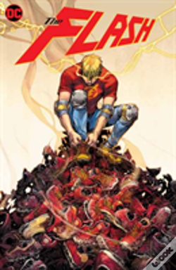 Wook.pt - The Flash: Year One